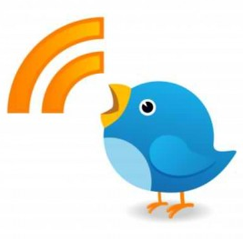 Who's Tweeting for You?  Choosing the Right Tweepresentative to Communicate for Your Brand