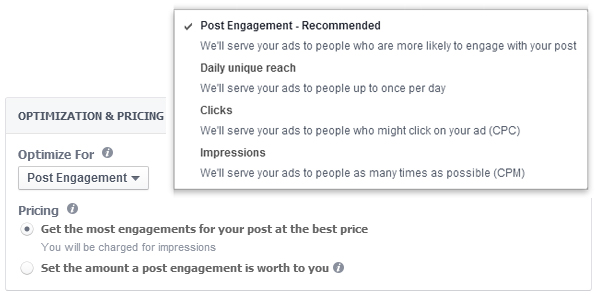 Facebook Bidding Options